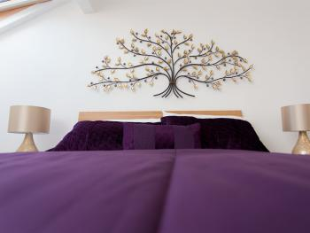 Luxurious Serviced Apartments -