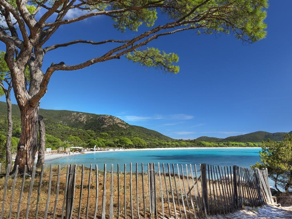 Célèbre plage de Palombaggia à 8km