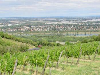 Vallée et Vignoble