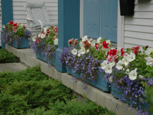 Flowers by summer on the front porch