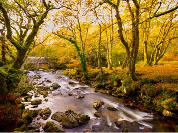 The River Dart, Dartmoor