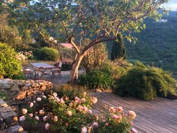 Le jardin espace petit déjeuner
