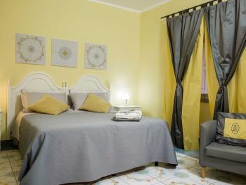 Matrimoniale-Premium-Bagno in camera con doccia-Vista giardino