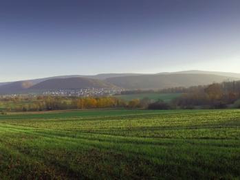Vue de Heiligenbrunn sur le village de Leymen