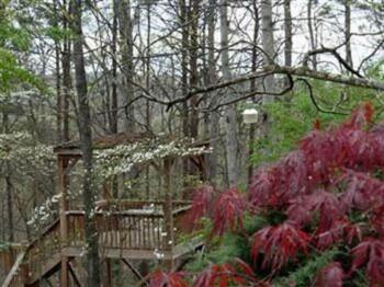 Treehouse Overlook