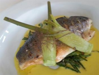 Grilled Fillet of Bass with Samphire Grass, Baby Fennel & Saffron Sauce