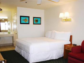 Triple room-Ensuite-Standard-Hotel room 210 - king bed - Triple room-Ensuite-Standard-Hotel room 210 - king bed
