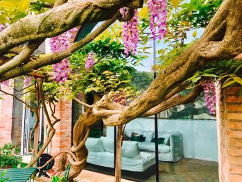 Un angolo risposante nel giardino del San Lorenzo tre