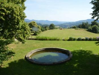 Bassin et jardin