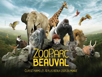20 minutes from the famous ZooParc de Beauval.