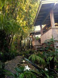 Hilo Bay Hale B&B Garden