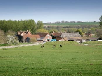 Bridge Farm Self Catering -