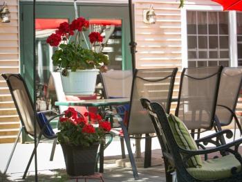 Geraniums on the patio