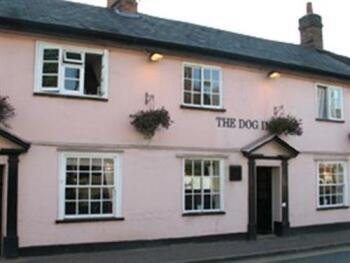 The Dog Inn -