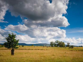 Enjoy beautiful views of the Simonside Hills