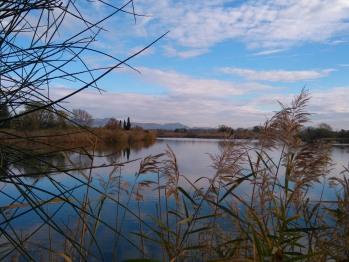 Randonnée le long des étangs de Villepey à 5 km de la maison