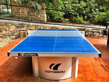 Onsite table tennis table