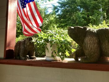 There are lots of hand carved bears