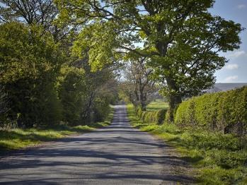brignall lane