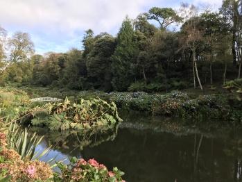The Beautiful Trebah Gardens