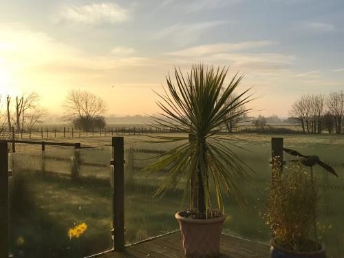 A winters morning a view from the breakfast conservatory