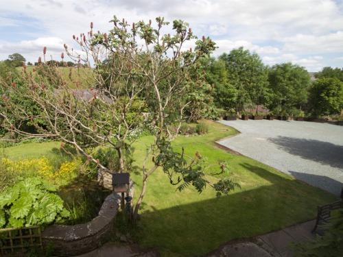 The Coach House garden pond and car park