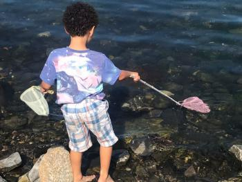 "Kids love Pitullie, complimentary use of ""bannie nets""  small fishing nets."
