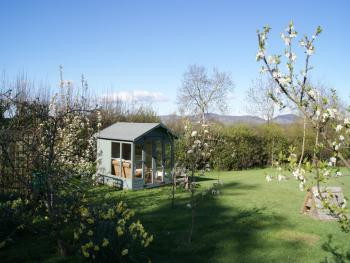 Relax in the summerhouse and watch the sheep.