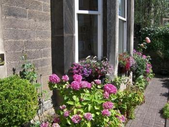 Highfield Guest House - Front Garden