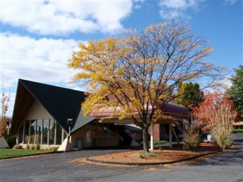 The Black Horse Lodge & Suites is an exterior property with seven different room types, all of which are equipped with wireless internet access, refrigerator, hair dryer, coffee maker, iron & board.