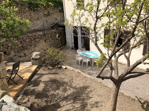 Vue jardin méditerranéen