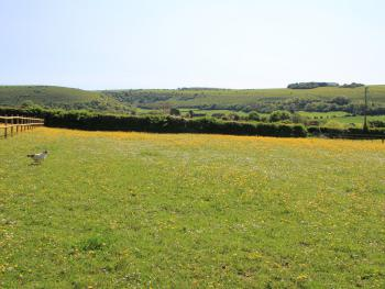The view from our paddocks, which are full of free range chickens, horses and a donkey