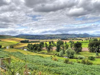 View from wooler