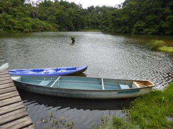 Lucky Bug Exterior - Pond