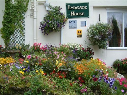 Lydgate House Hotel