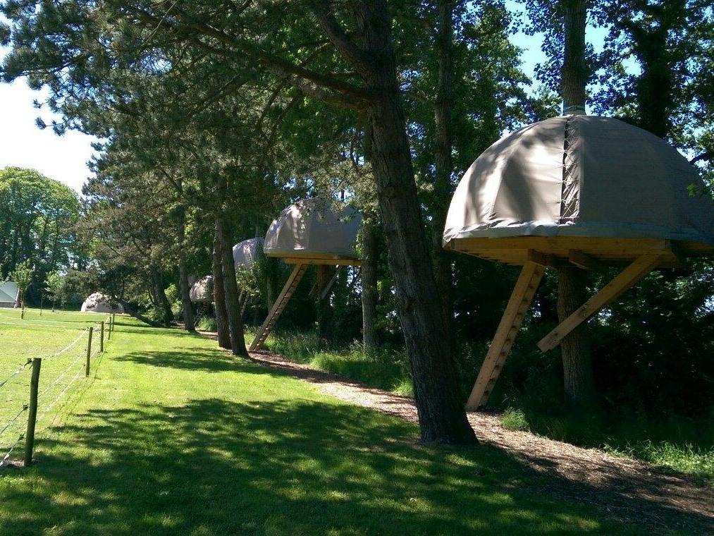 Treecamp-Cabane-Salle de bain partagée