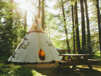 Tipi-Shared Bathroom-Standard-Woodland view-Crazy Horse Tipi - Base Rate