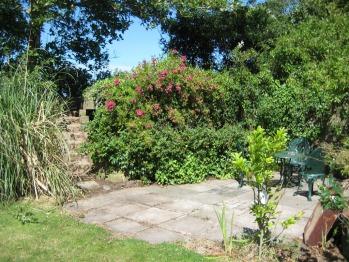 Patio area in garden