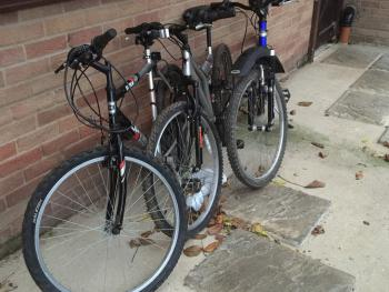 Free use of Bikes during your stay at Woodpadock B&B in March