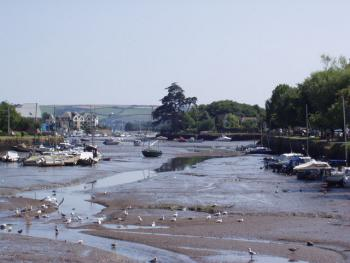 The Kingsbridge Estuary at low tide.  Perfect for bird watching.