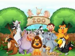 Free Zoo Tickets!