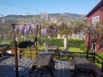 Jardín/Terraza trasera - La Posada de Ojébar