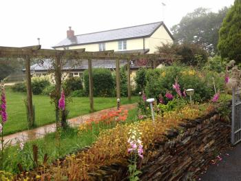 Barton Gate Farm Guesthouse - the farm in summer