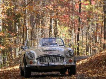 A guest enjoying the fall foliage in a vintage Healey on our 1/2 mile private drive.