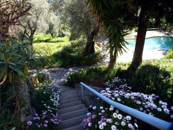 Escalier vers piscine