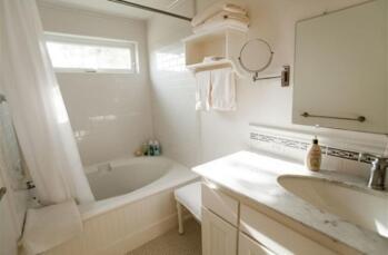 Daisy Shower over tub