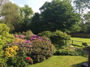 Im Garten blühen die Blumen und Sträucher der Region