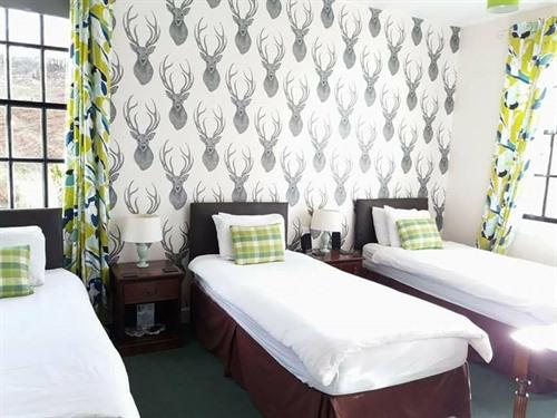 Twin room-Deluxe-Ensuite-Mountain View-Green Room - Base Rate