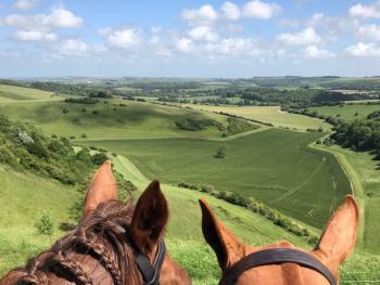Ride or walk on the chalk downs nearby