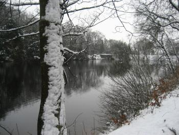 winter scene from the lake nearby